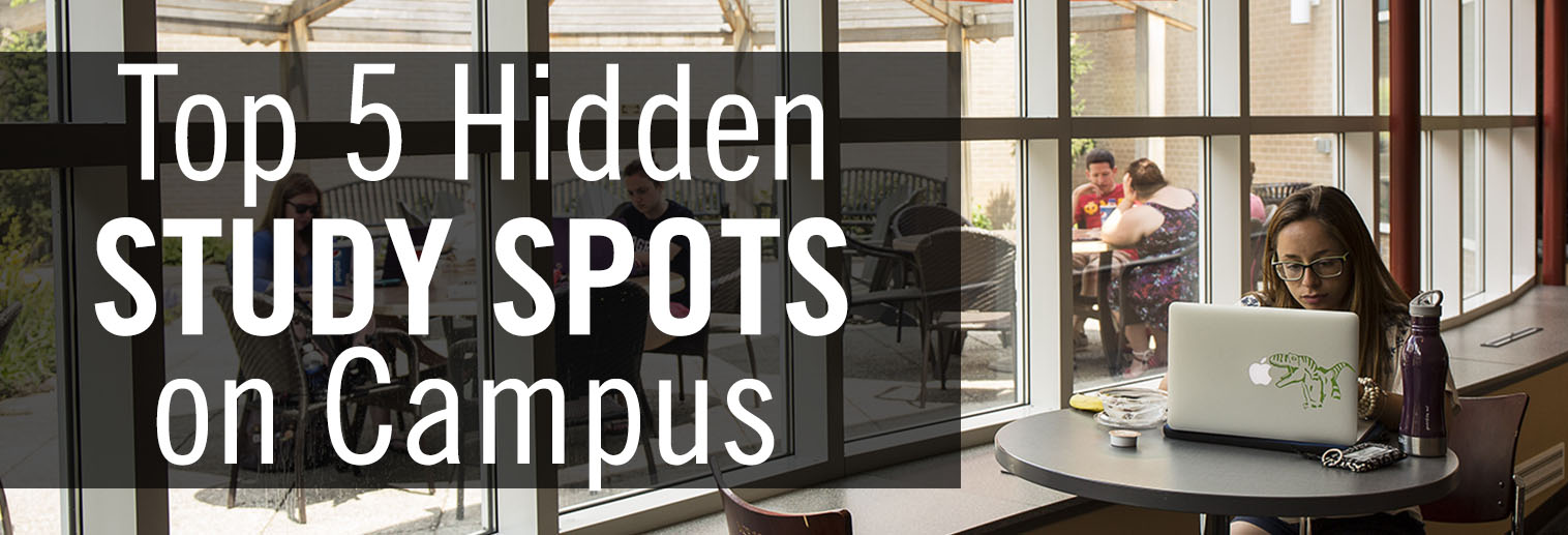 photo of student studying by window in HUB pavilion