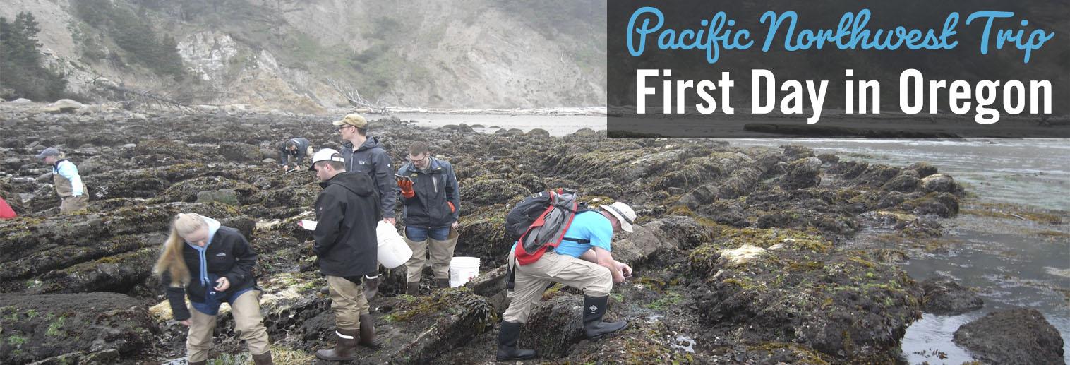 Image of Moravian College students exploring rocky shores of Oregon coast