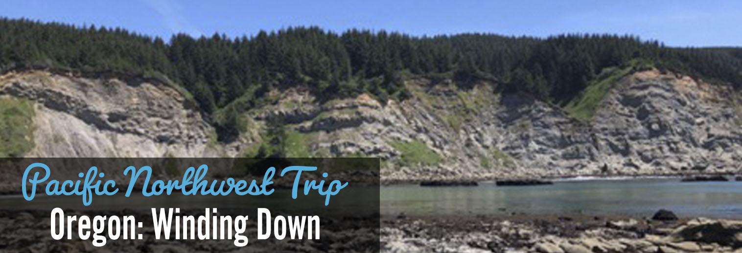 image of Oregon coast, rocky shoreline, gray cliffs and pine trees