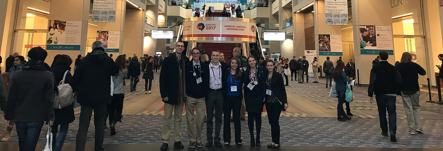 SfN Group at Conference
