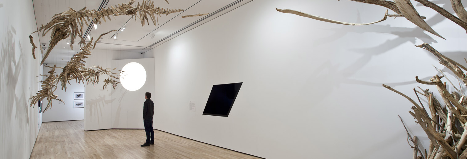 "Jonathan Latiano, ""Flight of the Baiji,"" 2014, Driftwood, bleach, plexiglass, halogen light and steel, 14 ft. x 17 ft. x 50 ft."