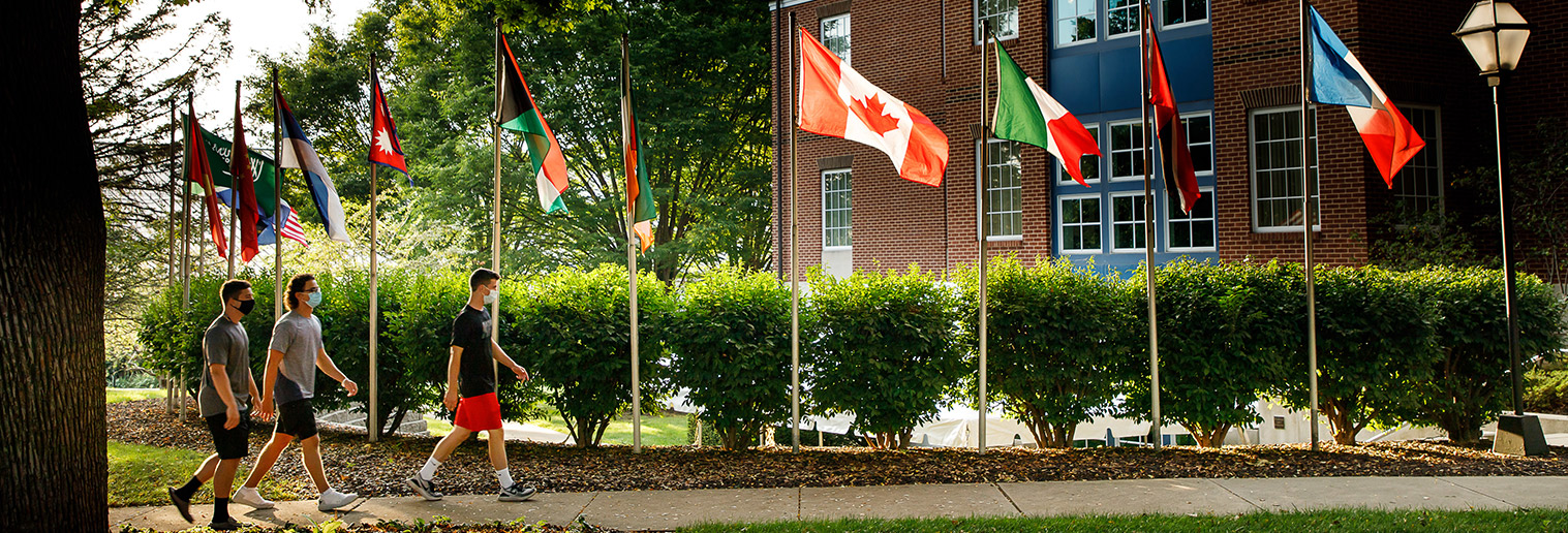 Reeves Library Flags