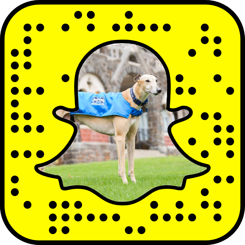 snapcode copy.png