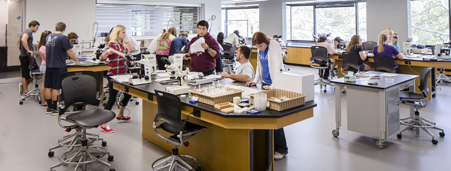 Student in a laboratory class