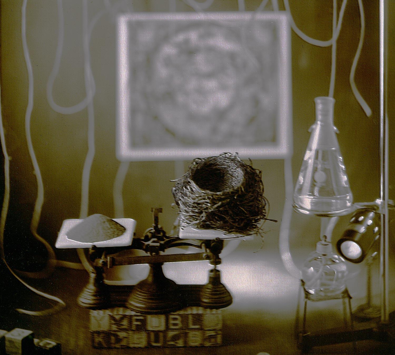 Whimsical Alchemy #24